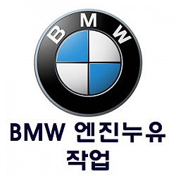 [BMW] 엔진누유 작업