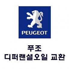 [PEUGEOT] 디퍼렌셜 오일 교환